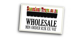Succulent-Trays.co.za - Wholesale - FREE Delivery To Gauteng!